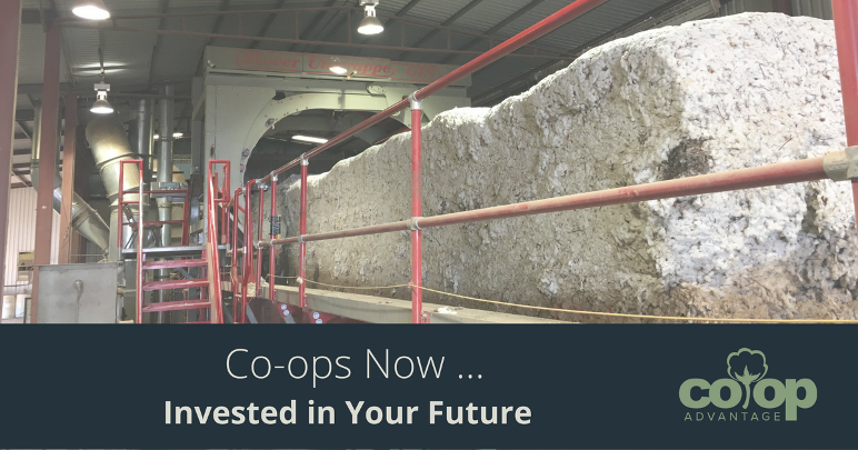 Co-ops Now … Invested in Your Future