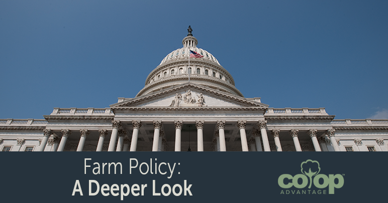 Farm Policy: A Deeper Look