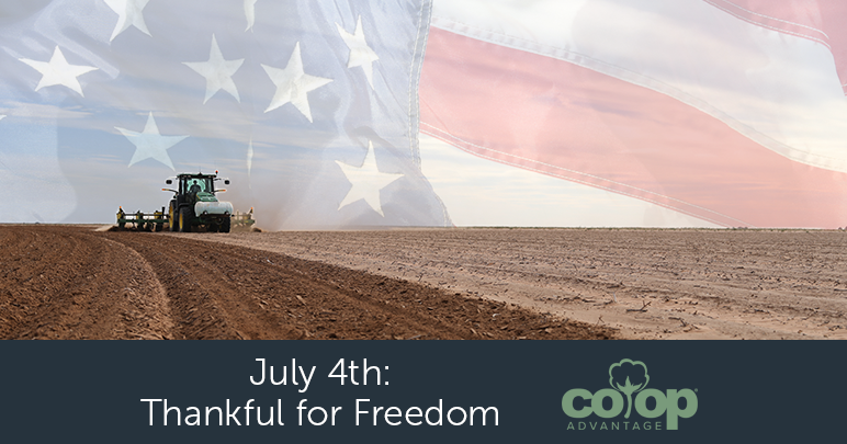 July 4th – Thankful For Freedom
