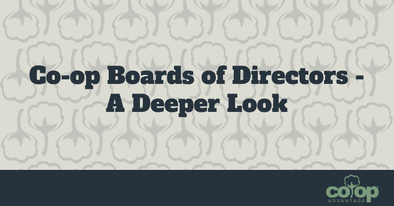 Co-op Boards of Directors – A Deeper Look