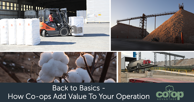 Back to Basics – How Co-ops Add Value to Your Operation
