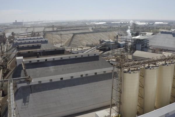 Cottonseed Oil Mills