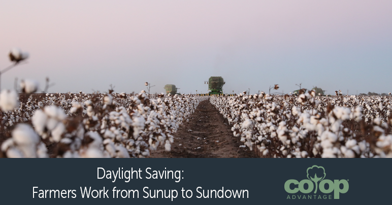 Daylight Saving: Farmers Work from Sunup to Sundown