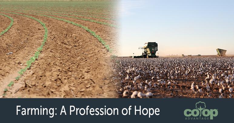Farming: A Profession of Hope