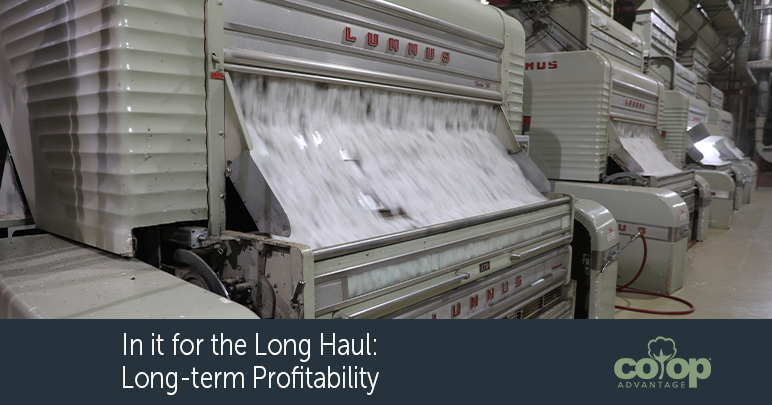 In it for the Long Haul: Long-Term Profitability